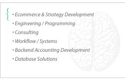 ecommerce, strategy development, engineering, programming, consulting, workflow / systems, backend accounting, database solutions